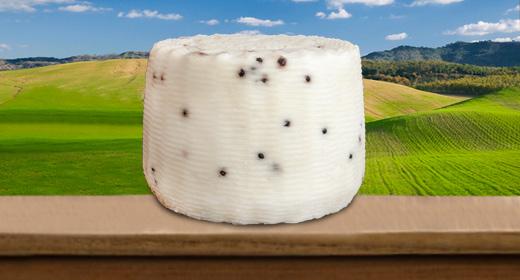 Formaggio pecorino o a latte misto fresco classico al pepe nero