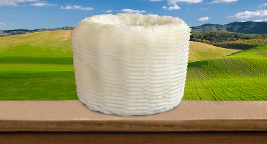Formaggio pecorino o a latte misto fresco classico