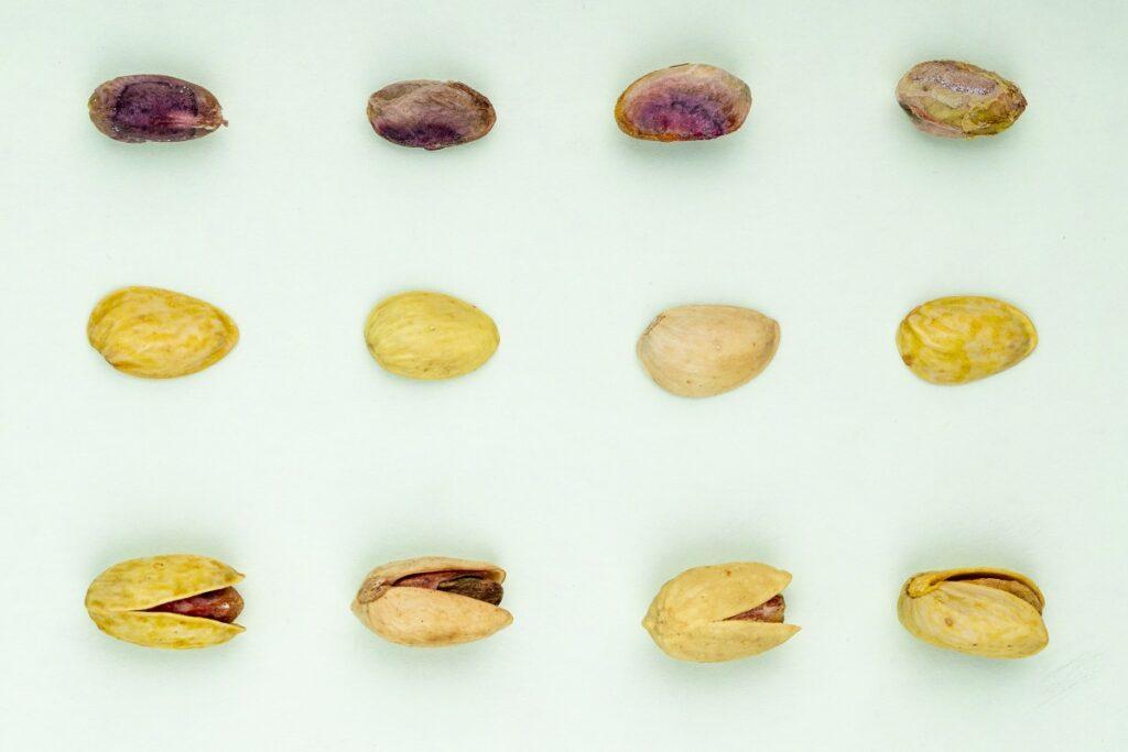 Tipi di pistacchio